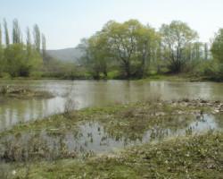 Машки труп пронајден во река Пчиња во Студена Бара