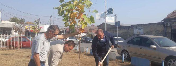 Засадени 100 нови садници во Куманово